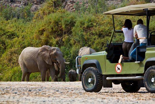 Okahirongo Elephant Lodge