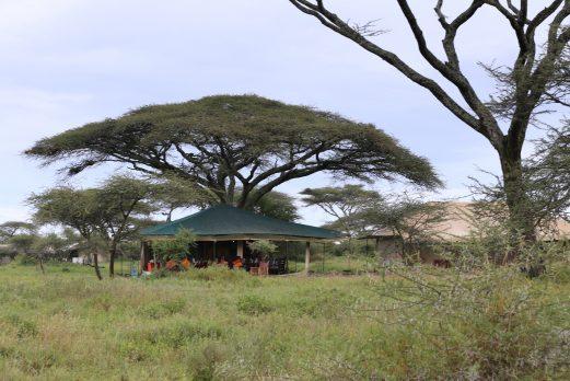 Nasikia Migration Camp