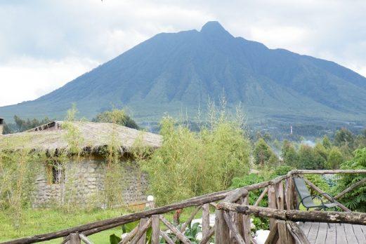 Gorilla Mountain View