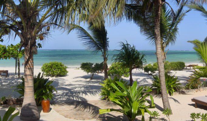 Next Paradise, Zanzibar