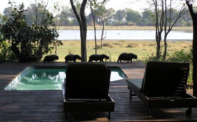 Kwara Camp, Kwara Conscession, Botswana
