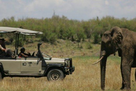Kenya: Saruni Safari Special
