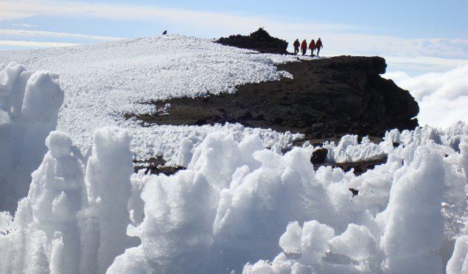 Uhuru Peak to Horombo Camp