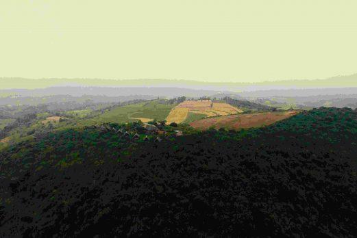 Rhotia Valley
